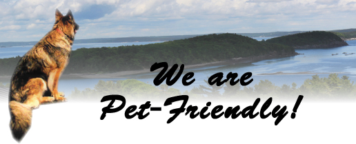 Pet Friendly Bar Harbor Maine